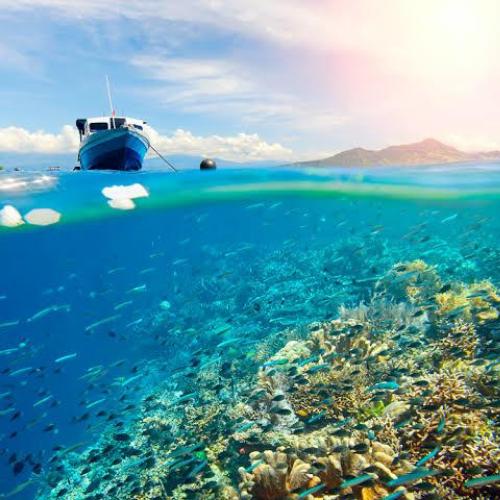 UNESCO Tetapkan Bunaken Sebagai Cagar Biosfer Indonesia