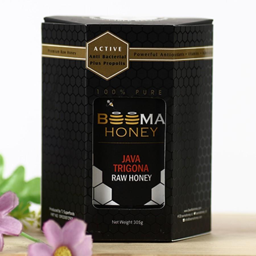 BeeMa Honey Java Trigona