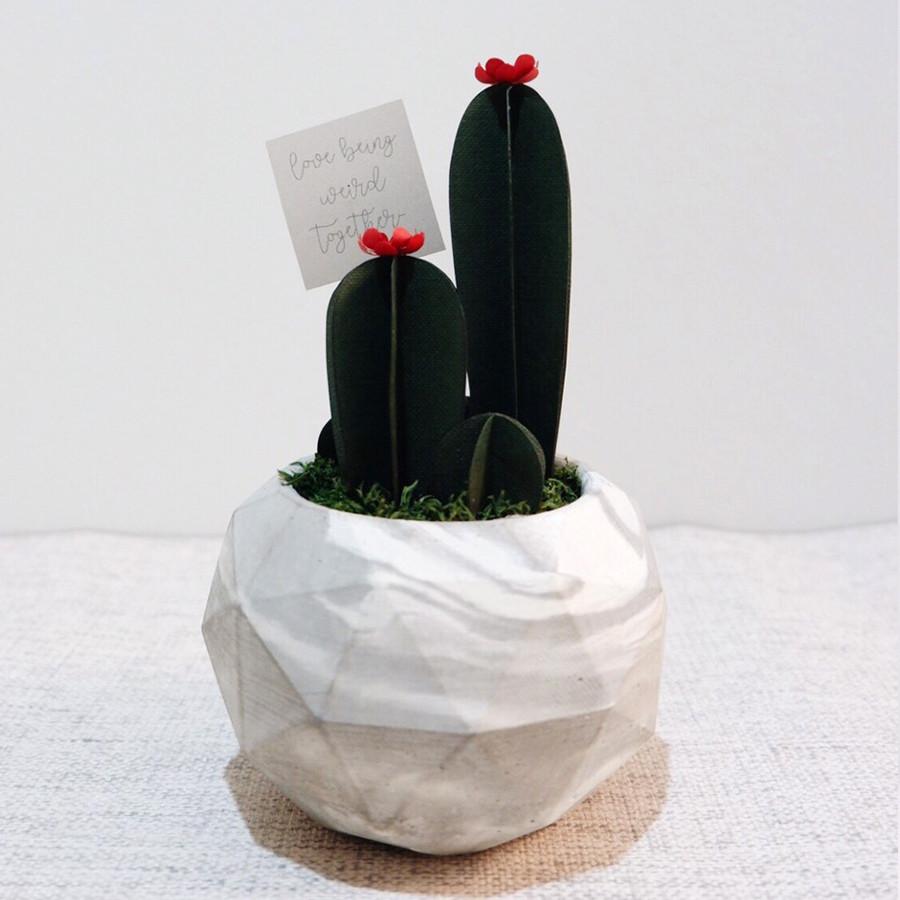 Cacti Buddies - Kaktus Kertas