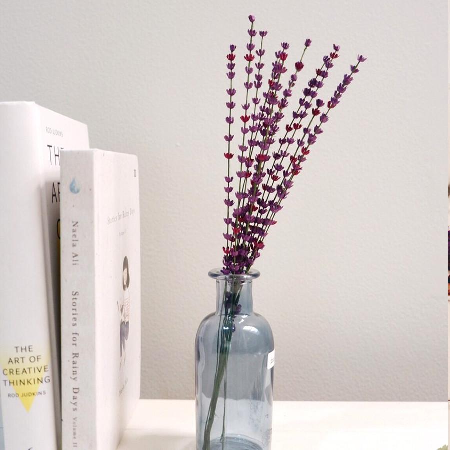 Paper Lavender - Lavender Kertas