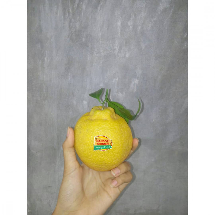 Jeruk Jepang Dekopon