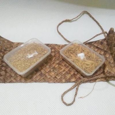 bengok-valisete-x-ikan-rawa_tas-enceng-gondok-handmade