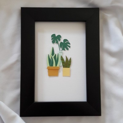 monstera-and-friends