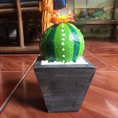 batu-lukis-cactus-7