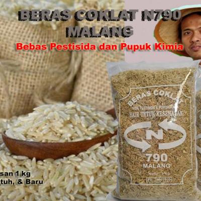 081-937-818-085-produsen-beras-coklat-organik-untuk-diet-diabetes-dan-bayi