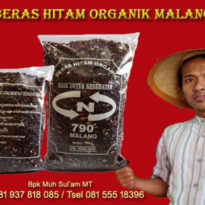 jual-beras-hitam-l-agen-beras-hitam-l-produsen-beras-hitam-l-penjual-beras-hitam-l-distributor-beras-hitam-l-grosir-beras-hitam-l-toko-beras-hitam-l