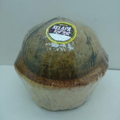 kelapa-kopyor