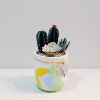 belle-cacti-kaktus-kertas