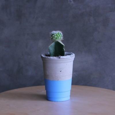 pot-gelas-biru