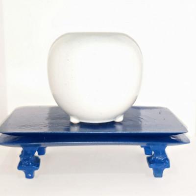 meja-bonsai-blue-sapphire