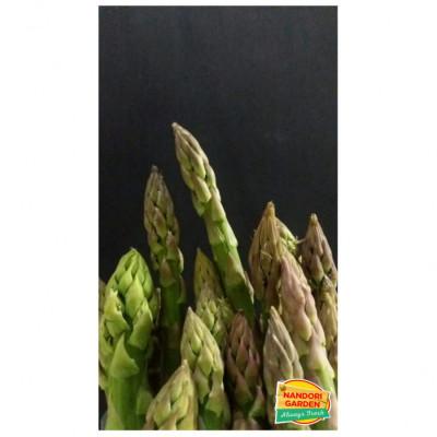 asparagus-hijau-lokal