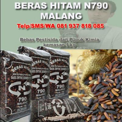 081-937-818-818-call-me-beras-hitam-organik-malang-l-produsen-beras-hitam-organik-malang-l-grosir-beras-organik-malang-l