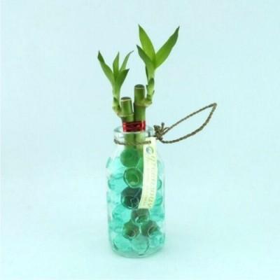 souvenir-bambu-hoki